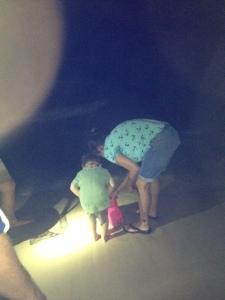 beach crab catchin