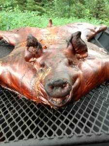 cooked pig