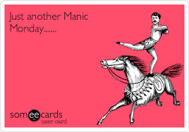 manic monday horse