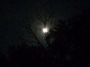 my heart moon