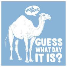 guess what day wed woot woot