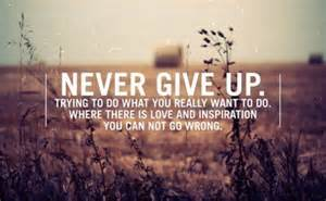 never give up what you love to do